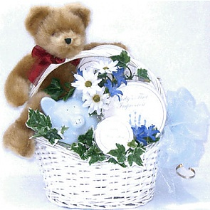 Bundle of Joy Gift Basket (Large) -