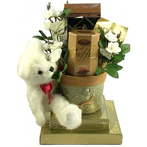 Beary Best Wishes Gift Basket -