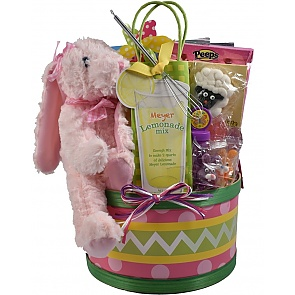Easter Egg Hunt, Easter Basket For Kids - Medium - Pink - Send kids Easter baskets online
